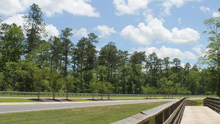 Aynor Overpass highway side view