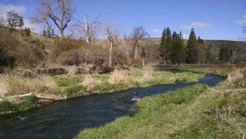 flood mitigation at river