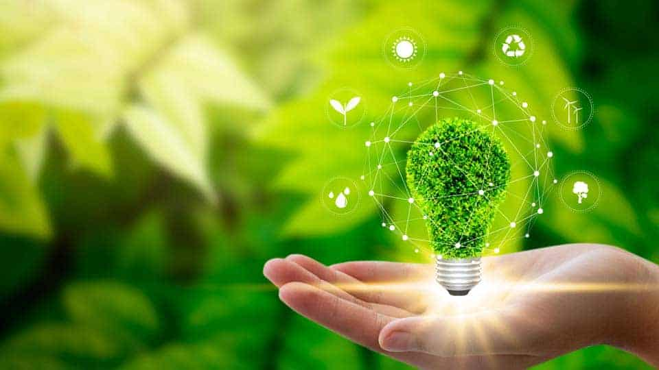 green plants surround hand holding graphic of environmental light bulb with sustainability ideas