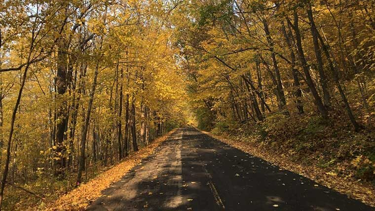 Kettle Moraine State Forest