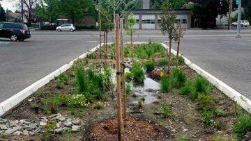 Stormwater equity - Rain garden