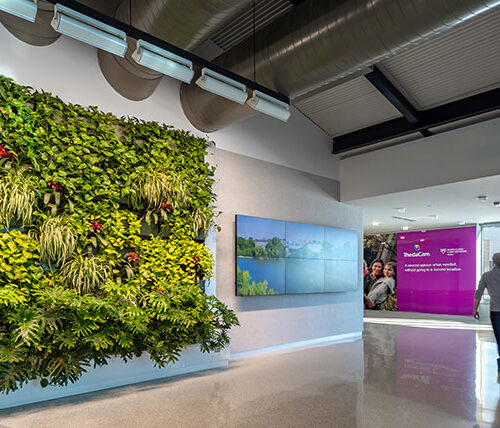 Appleton International Airport living wall