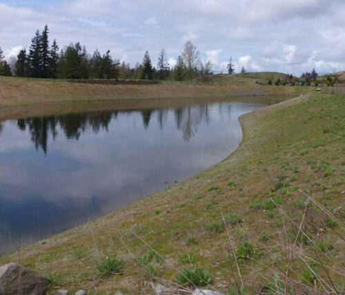 Issaquah highlights stormwater runoff
