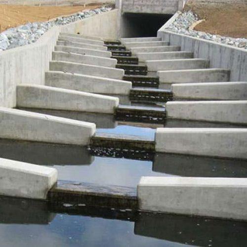 Newton Creek fish passage